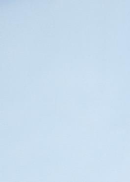 Chemise habillée Slim en satin de coton uni bleu ciel 2 - Father And Sons