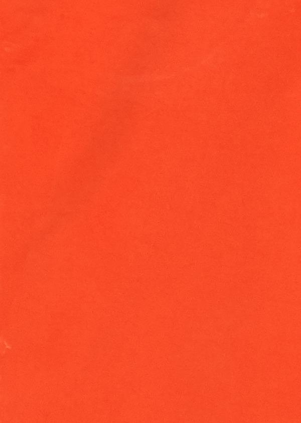 Bermuda en coton stretch orange uni - Father and Sons 18870