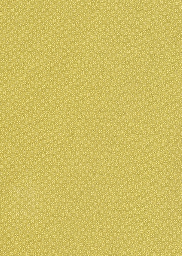 Bermuda en coton stretch à motif fleuri jaune - Father and Sons 33779