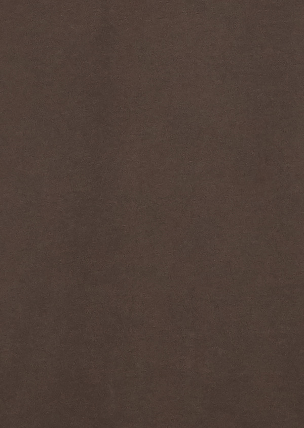 Polo manches courtes Slim en coton uni marron foncé - Father and Sons 18569